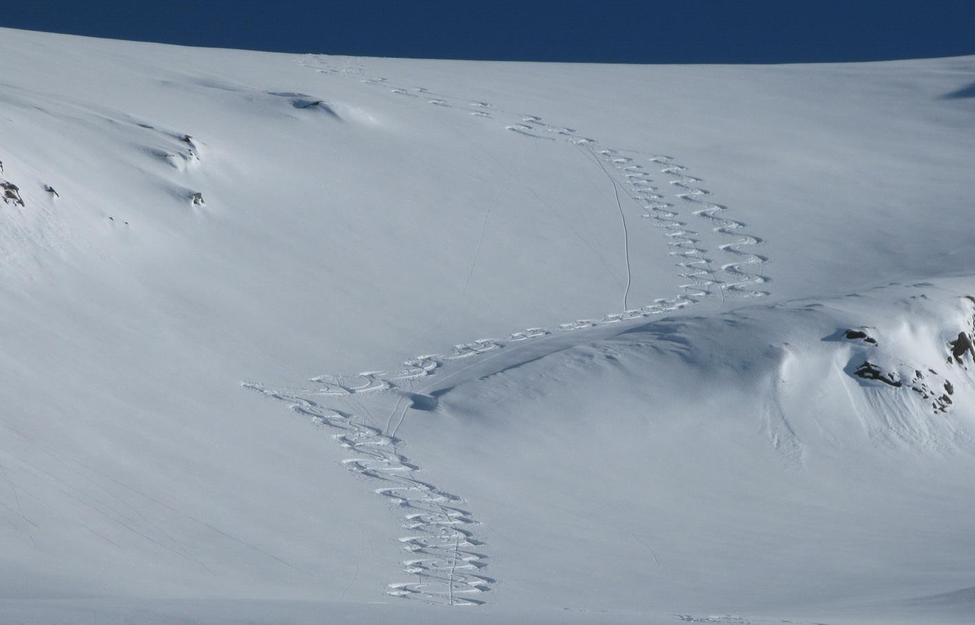 dole_lyžujeme_panenským_svahom