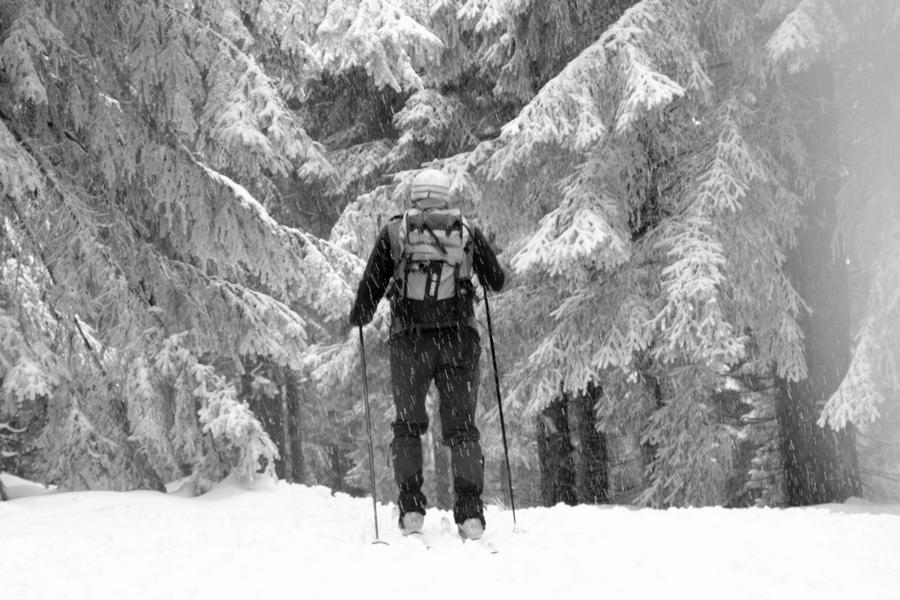 Dokonalá_zimná_idylka