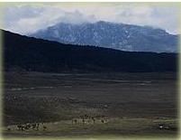 Puncak Trikora