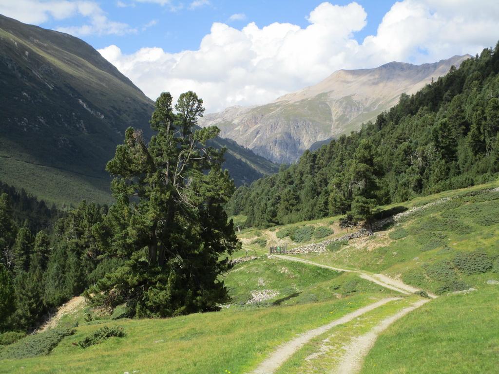 prírodná_rezervácia,_limbový_les_God_Giavagl