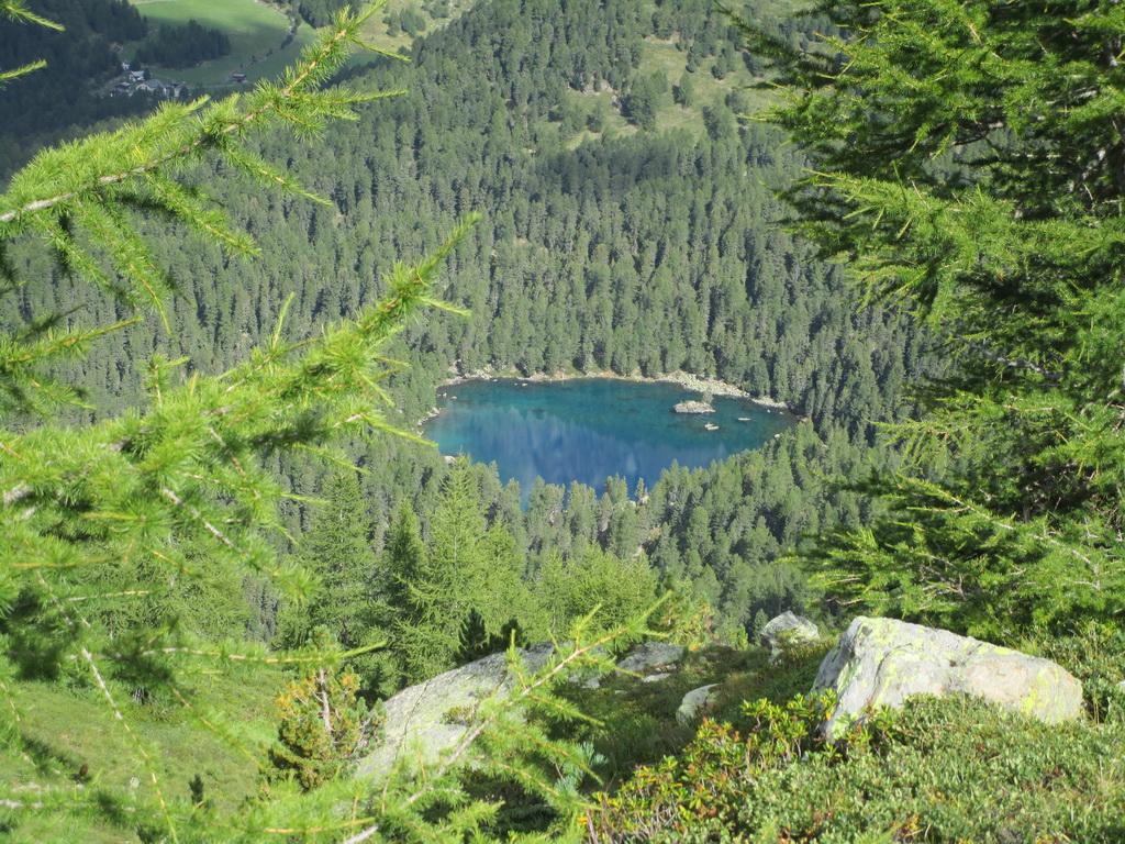 Lago_Saoseo_vraj_jedno_z_najkrajších_v_Alpách