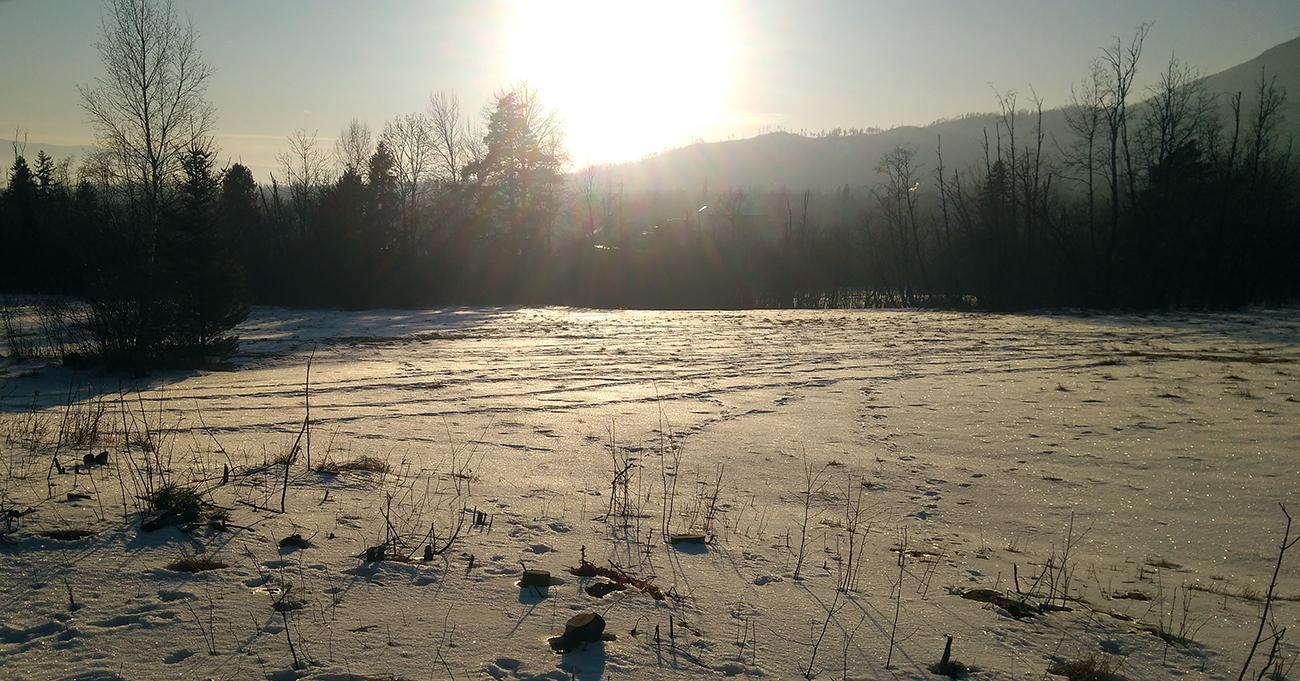 Poslední_mohykáni_na_obzore_odolávajú_vetrom,_slnko_skláňa_hlavu_a_hladí_krajinu_tieňom.