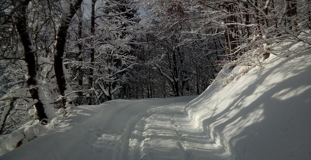 Zimná_rozprávka_medzi_mantinelmi.